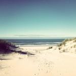 Brannan Instagram 150×1501