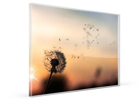 bilder fuer hotelzimmer acrylglas ansicht