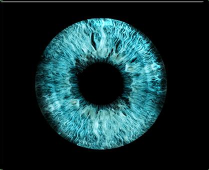 Irisfoto Beispiel easy-iris